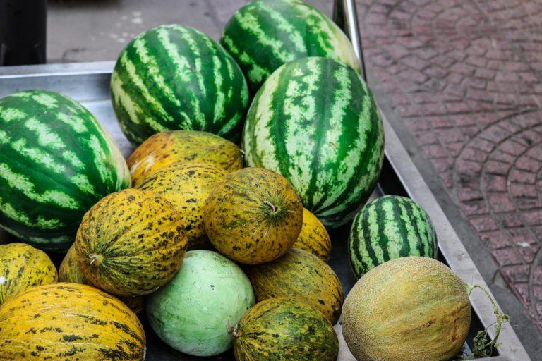 2 soorten meloen